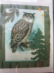 owl and pines
