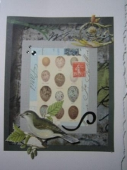 Bird on branch with egg collage background