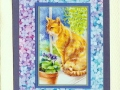 orange garden cat with blues & purples