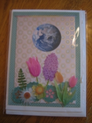 Spring flowers equinox