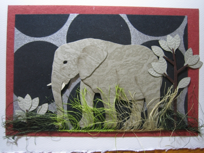 Adult elephant with black circles backgrd