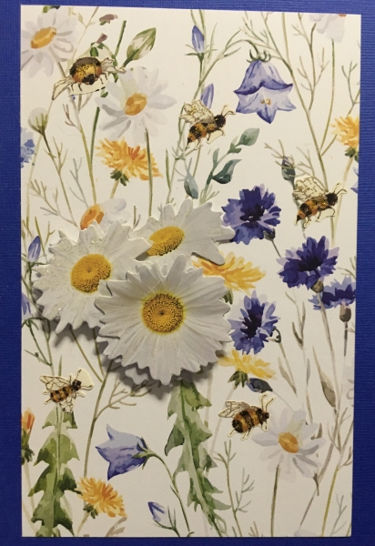 bees-on-white-and-blue-with-daisies