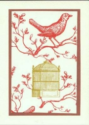 Red bird on branch with bird cage