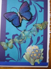 blue butterfly on blue paper