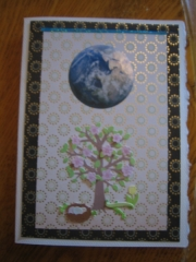 Spring tree equinox