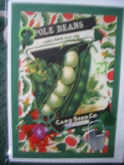 Garden - pole beans