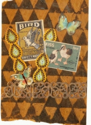 brown-black-bird-collage