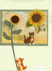 cats_and_sunflower