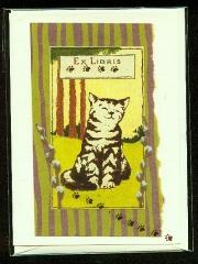 sweet_olive_cat