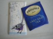 Tea bag and blue bird